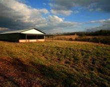 Boxwood Farms